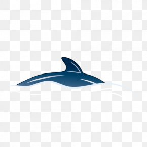 Dolphin - Dolphin Operating System Icon PNG