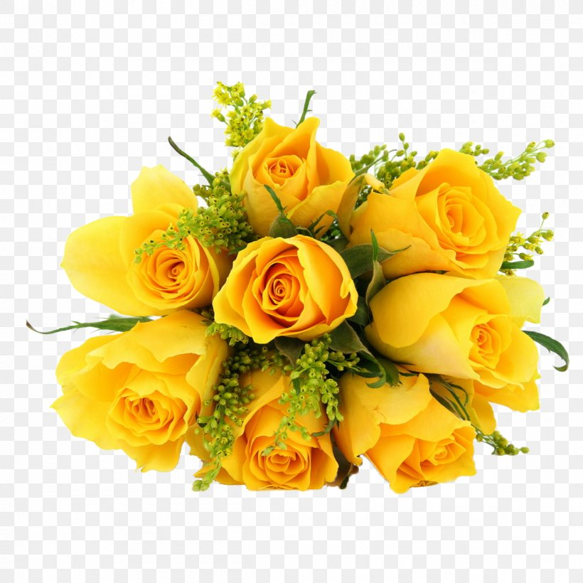 Rose Yellow Flower Desktop Wallpaper Png 1200x1200px Rose Bud Color Cut Flowers Floral Design Download Free