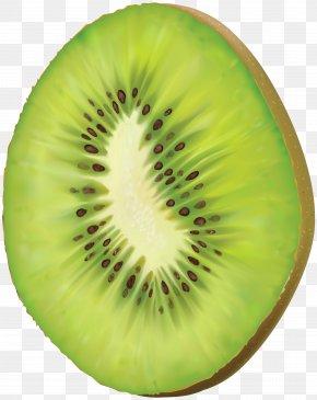 Kiwi Transparent Clip Art - Kiwifruit Clip Art PNG