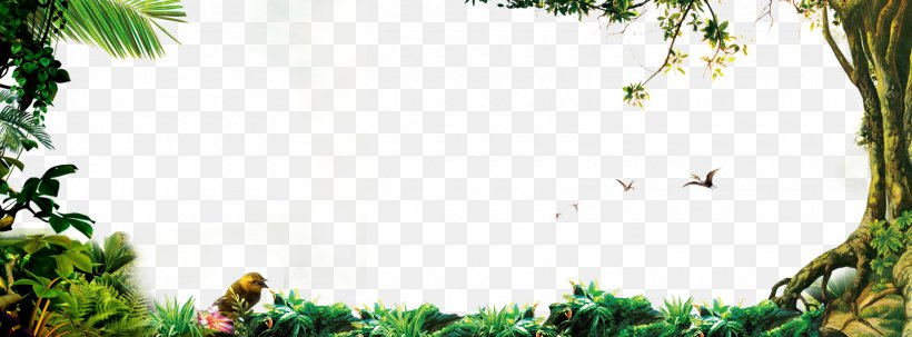 Jungle Forest Png 1620x600px Tree Branch Flora Flower Grass Download Free Free icons of forest in various design styles for web, mobile, and graphic design projects. tree branch flora flower grass