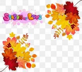 Maple Autumn Leaves - Autumn Leaf Color Euclidean Vector Stock Photography PNG