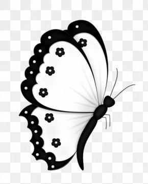 A Butterfly - Butterfly Butterflies In Colour Greta Oto Clip Art PNG