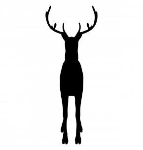 Reindeer - Reindeer Wildlife Game Antler PNG