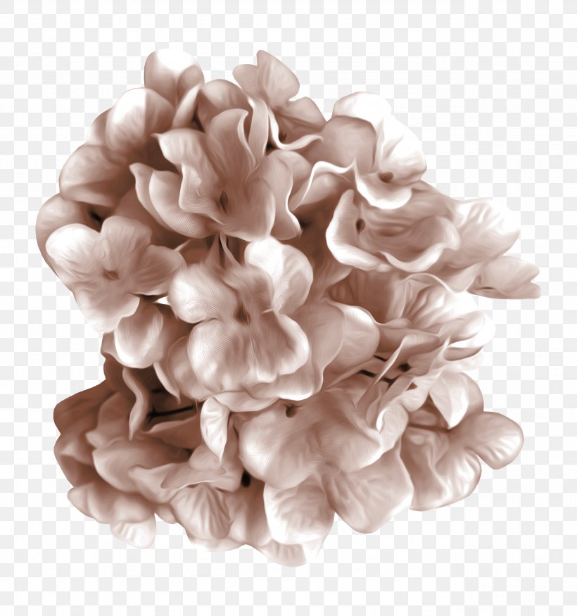 Petal Cut Flowers, PNG, 2559x2731px, Petal, Cut Flowers, Flower, Lilac, White Download Free