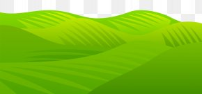 Grass Meadow Transparent Clip Art Image - Green Leaf Product Angle PNG