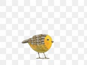 Cute Bird - Bird Art Drawing Painting Illustration PNG