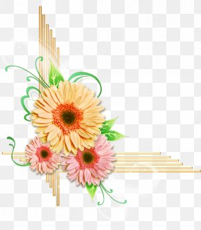 Flower - Cut Flowers Floral Design Transvaal Daisy PNG