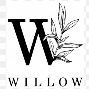 Willow Bark - Make-A-Wish Foundation Management Child Mississippi University For Women Business PNG