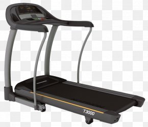 Fitness Treadmill - Exercise Equipment Physical Fitness Treadmill Fitness Centre Elliptical Trainers PNG