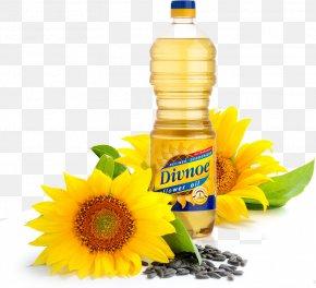 Sunflower Oil - Sunflower Oil Organic Food Common Sunflower Sunflower Seed PNG