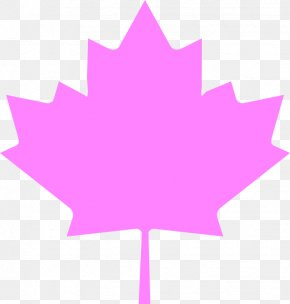 Pink Leaves - Flag Of Canada Flag Of Quebec Maple Leaf PNG