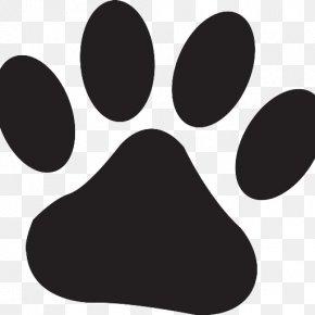 Cat - Cat Dog Veterinarian Pet Clip Art PNG