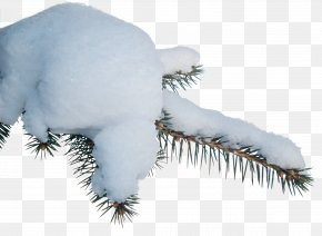 Thick Snow - Snow Clip Art PNG