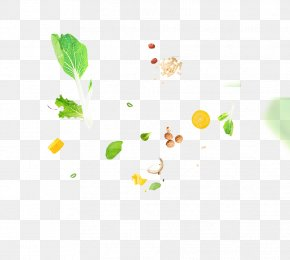 Vegetable Flat Shot - Vegetable Food Fruit Ingredient PNG