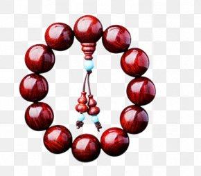India Lobular Red Sandalwood Beads Bracelets 2.0 Venus - Indian Sandalwood Red Sandalwood PNG