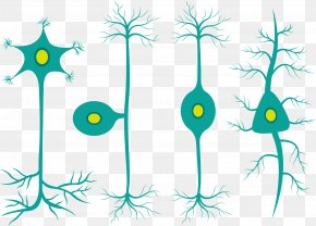 Cute Medical Cell Vector - Cell Graphic Design Clip Art PNG