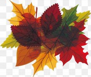 Leaves Heading Box In Autumn - Autumn Leaf Euclidean Vector PNG