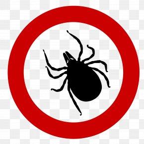 Red Circle Spider - Deer Tick Ixodes Ricinus Tick-borne Disease Lyme Disease PNG