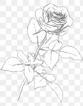 Drawing - Drawing Visual Arts Black And White PNG