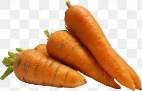 Carrot Image - Carrot Salad Clip Art PNG