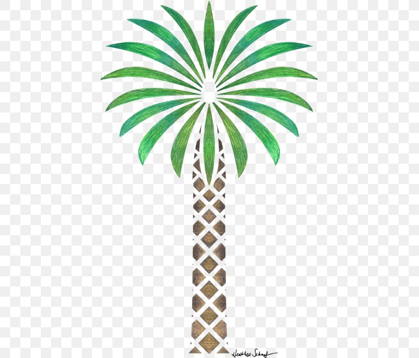 Arecaceae Date Palm Tree Drawing Woody Plant, PNG, 527x700px, Arecaceae, Arecales, Art, Date Palm, Drawing Download Free