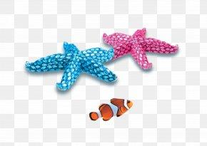 Starfish - PTT Bulletin Board System Beach Blue U9633u5149u6c99u6ee9 Green PNG