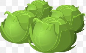Cartoon Cabbage Food - Cabbage Vegetable Lettuce Clip Art PNG