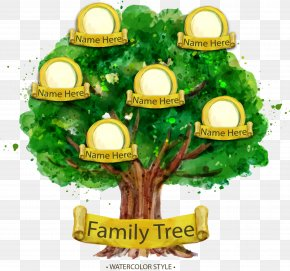 Hand Painted Watercolor Family Tree - Family Tree Genealogy Illustration PNG