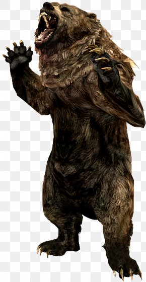 Skyrim - Grizzly Bear The Elder Scrolls V: Skyrim – Dragonborn Cave Bear Animal Alaska Peninsula Brown Bear PNG