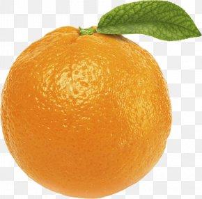 Orange Image Download - Orange Juice Tangerine Fruit PNG