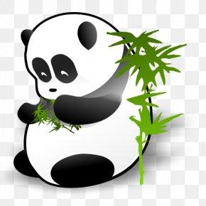 Giant Panda - Giant Panda Icon PNG