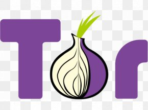 Onion - Tor Browser Web Browser Anonymous Web Browsing Anonymity PNG