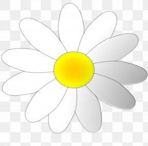 Daisy Flower Cliparts - Margarita Common Daisy Clip Art PNG