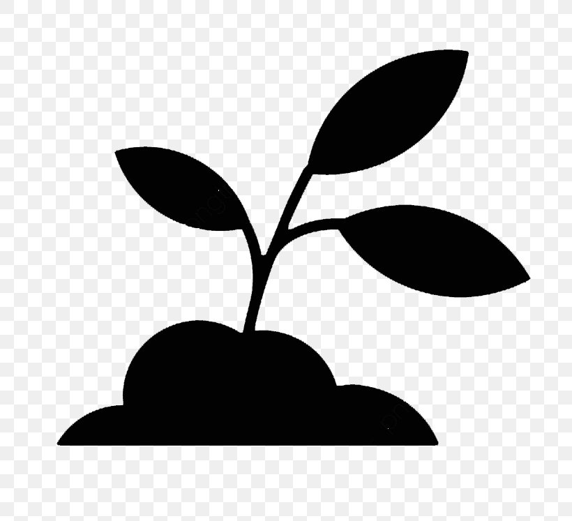 Leaf Black Black-and-white Plant Tree, PNG, 771x747px, Leaf, Black, Blackandwhite, Branch, Flower Download Free