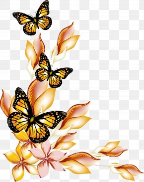 Flowers And Butterflies Borders Vector - Butterfly Flower PNG