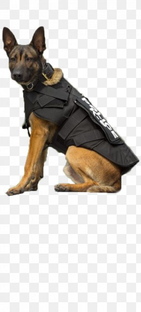 Police Dog - German Shepherd Puppy Poodle Dog Breed Police Dog PNG