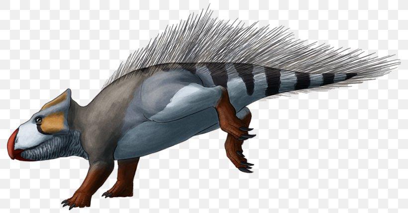 Udanoceratops Dinosaur Late Cretaceous Asiaceratops Chasmosaurus, PNG, 800x429px, Udanoceratops, Beak, Chasmosaurus, Cretaceous, Dinosaur Download Free