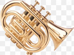 Musical Instruments - Musical Instruments Wind Instrument Saxophone Brass Instruments Trombone PNG