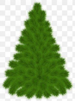 Pine Tree Clipart Picture - Pine Tree Clip Art PNG