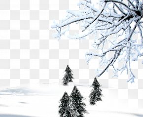 Winter Background Material - Winter Snow Download Computer File PNG