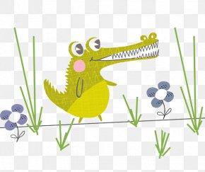 Crocodile - Tree Frog Flora Fauna Illustration PNG