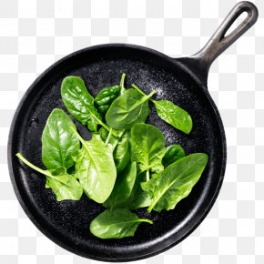 Vegetable - Spinach Spring Greens Leaf Vegetable Food PNG