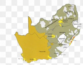 Brown South Africa Map - South Africa Apartheid Race Bantustan Map PNG