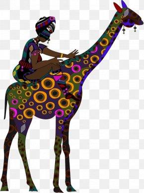 Cartoon Giraffe - Northern Giraffe Cartoon Photography Illustration PNG