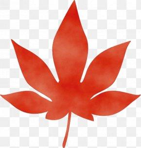 Flowering Plant Flower - Leaf Red Petal Plant Flower PNG