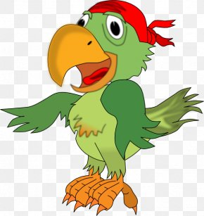 Parakeet Cliparts - Pirate Parrot Piracy Free Content Clip Art PNG