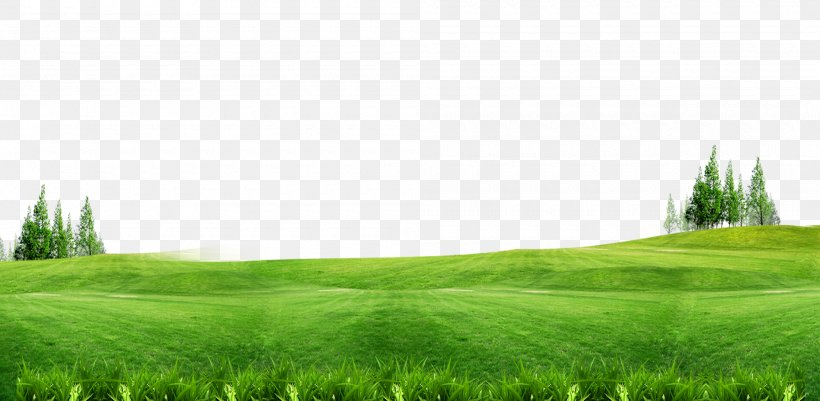 Download Lawn Gratis Wallpaper Png 2000x979px Green Color Ecosystem Energy Field Download Free