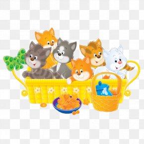 Kitten - Kitten Cat Stock Photography Clip Art PNG