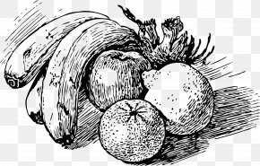Peach Fruit - Drawing Fruit Line Art Sketch PNG