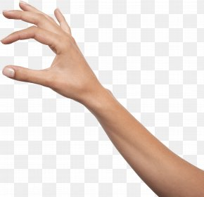 Hands Hand Image - Holding Hands Icon PNG